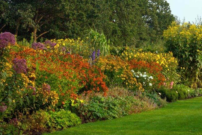 Garten der horizonte for Garten stauden
